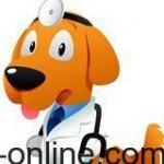 ¿Debo esterilizar a mi perra?